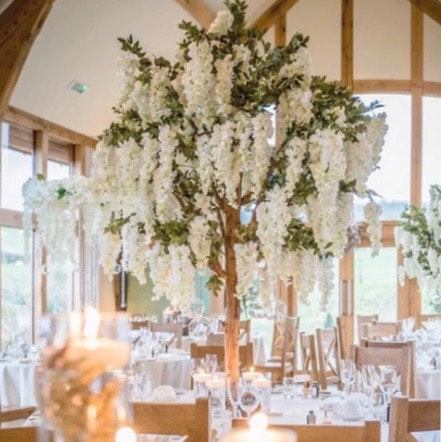 wisteria blossom tree hire in london and essex